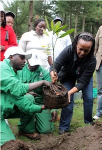 リズ・ガタタEABL企業関係部長は、2013年の世界環境の日に記念し植樹をしました。
